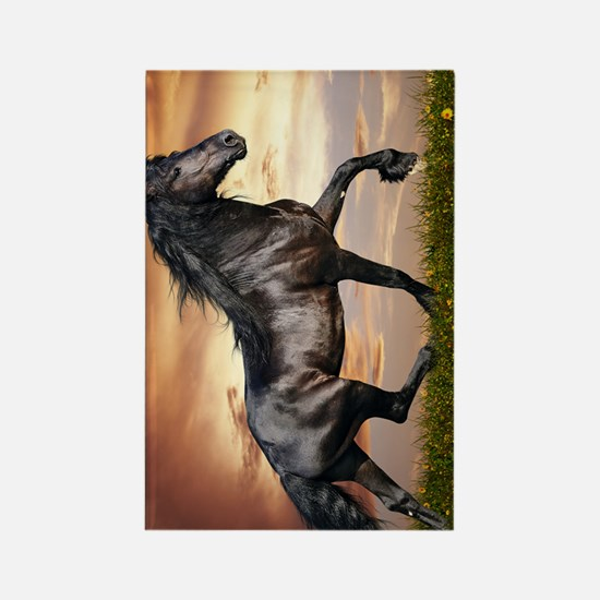 Beautiful Black Horse Rectangle Magnet
