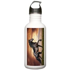 Beautiful Black Horse Water Bottle