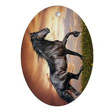 Beautiful Black Horse Oval Ornament