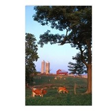 Dairy Farm Postcards (Package of 8)