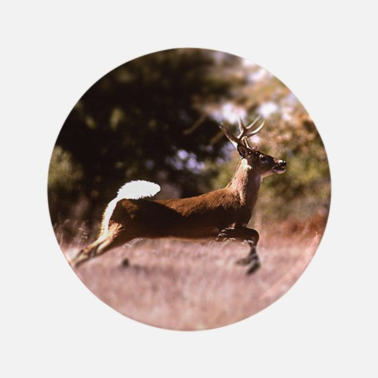 White-Tail Deer Running  Button