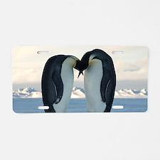 Emperor Penguin Courtship Aluminum License Plate