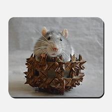 Little Rat in Basket Mousepad