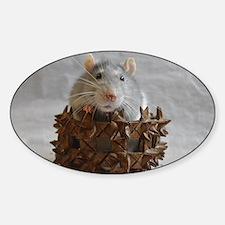 Little Rat in Basket Decal