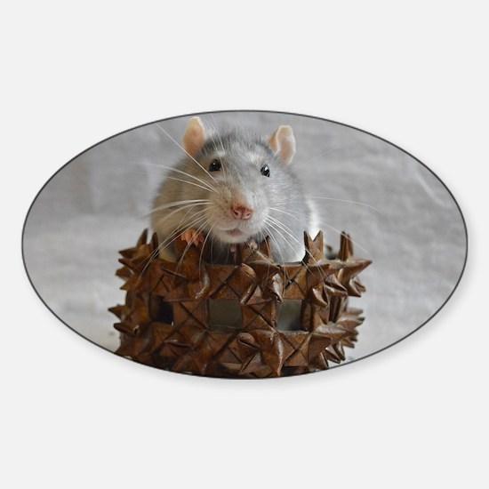 Little Rat in Basket Sticker (Oval)