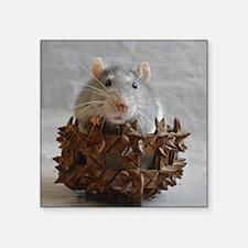 Little Rat in Basket Sticker