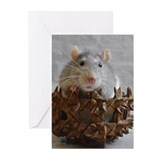 Rat Greeting Cards (10 Pack)