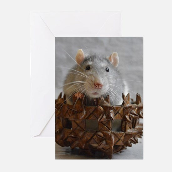 Little Rat in Basket Greeting Cards