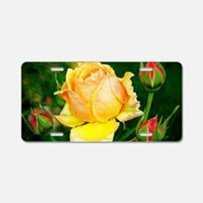 Beautiful Yellow and Red Roses Aluminum License Pl