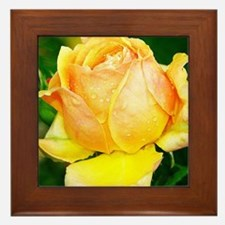 Beautiful Yellow and Red Roses Framed Tile