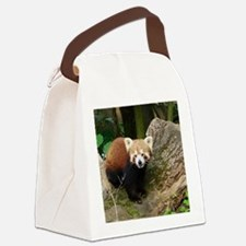 Red Panda 415P1 Canvas Lunch Bag
