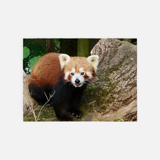 Red Panda 415P1 5'x7'Area Rug