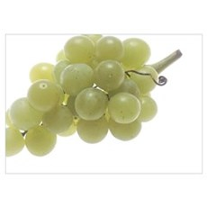 White Grapes Poster