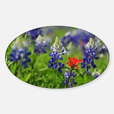 Wildflower Design Sticker (Oval)