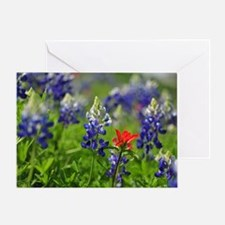Wildflower Design Greeting Card
