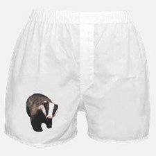 Cute Badger Boxer Shorts