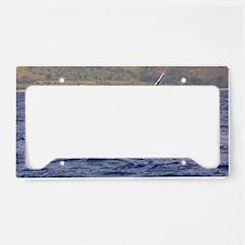 Humpback Whale Splashing License Plate Holder