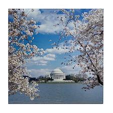 Thomas Jefferson Memorial with Cherry Tile Coaster