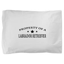 LabProperty.png Pillow Sham