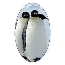Emperor Penguins Huddled Decal