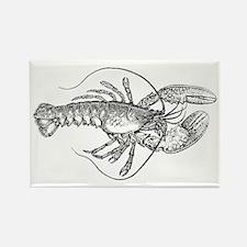 Vintage Lobster illustration Rectangle Magnet