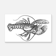 Vintage Lobster illustration Rectangle Car Magnet