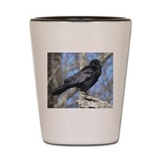 Crow perched Shot Glass