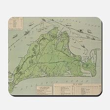 Vintage Map of Marthas Vineyard (1913) Mousepad