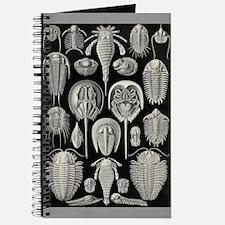Trilobite Journal