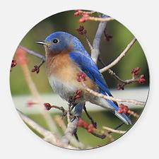 Red Bud Bluebird Round Car Magnet