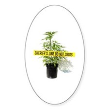 Medical Marijuana Decal