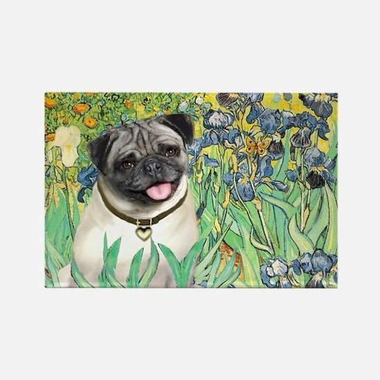Irises / Pug Rectangle Magnet