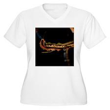 Women's V-Neck Plus Size T-Shirt