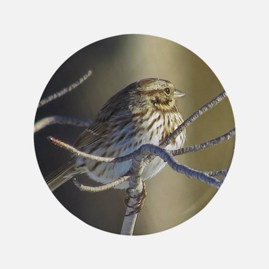 Sparrow Button