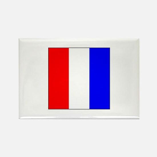 ICS Flag Letter T Magnets
