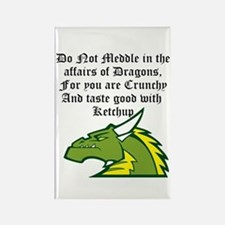 Dragon Affairs Magnets