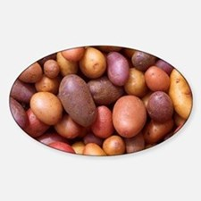 Potatoes Sticker (Oval)