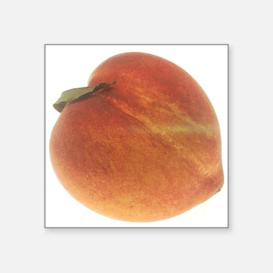 """Georgia Peach Square Sticker 3"""" x 3"""""""