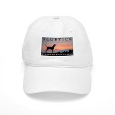 Bluetick Coonhound Sunset Baseball Cap
