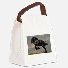 Beautiful Black Horse Canvas Lunch Bag