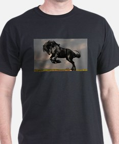 Beautiful Black Horse T-Shirt