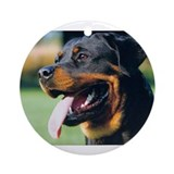 Rottweiler Round Ornaments