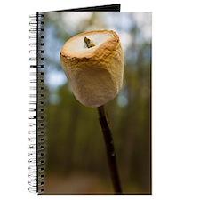 Roasting Marshmallows  Journal