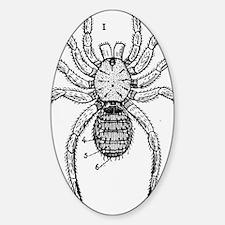 Vintage Spider Diagram Sticker (Oval)