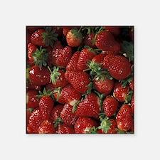 "Bushel of Strawberries  Square Sticker 3"" x 3"""