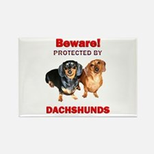 Beware Dachshunds Dogs Rectangle Magnet