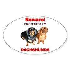 Beware Dachshunds Dogs Oval Decal