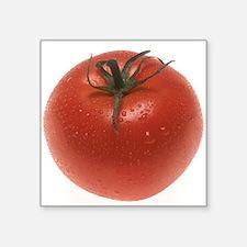 """Fresh Tomato Square Sticker 3"""" x 3"""""""