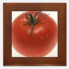 Fresh Tomato Framed Tile