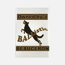 Ballistic Beauceron Portrait Magnets
